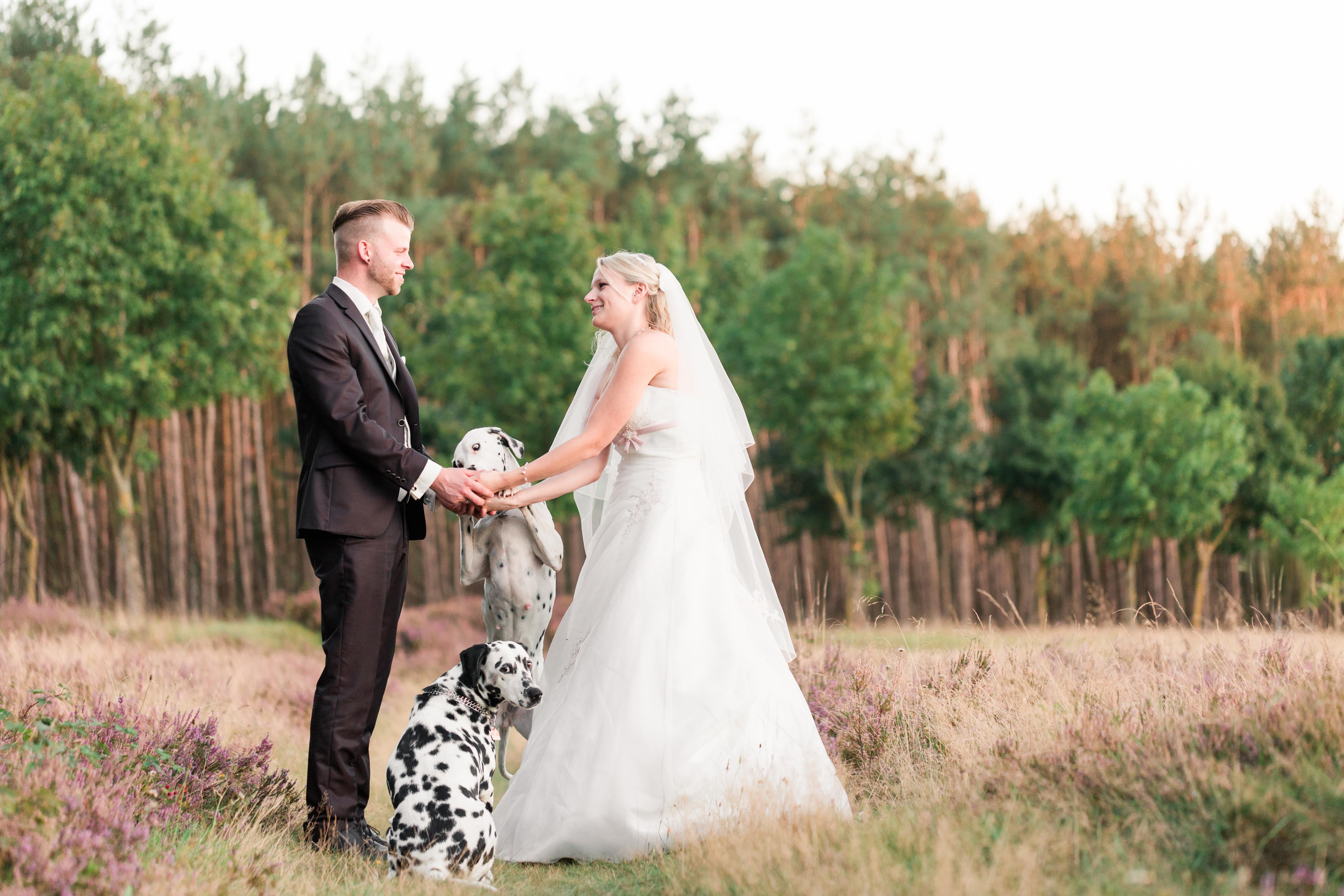 Hochzeitsfotograf-Hochzeit-After-Wedding-Paderborn-Hövelhof-Münchehagen